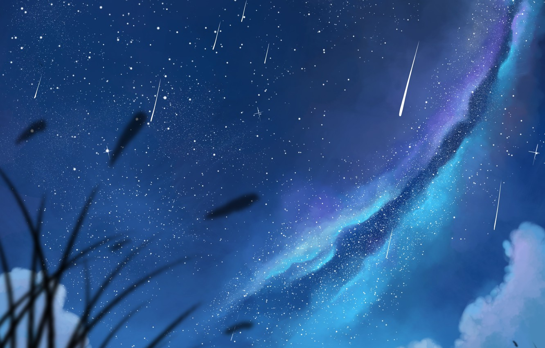 Фото обои небо, девушка, звезды, облака, ночь, аниме, арт, пара, парень, млечный путь, двое, dias mardianto, donsaid