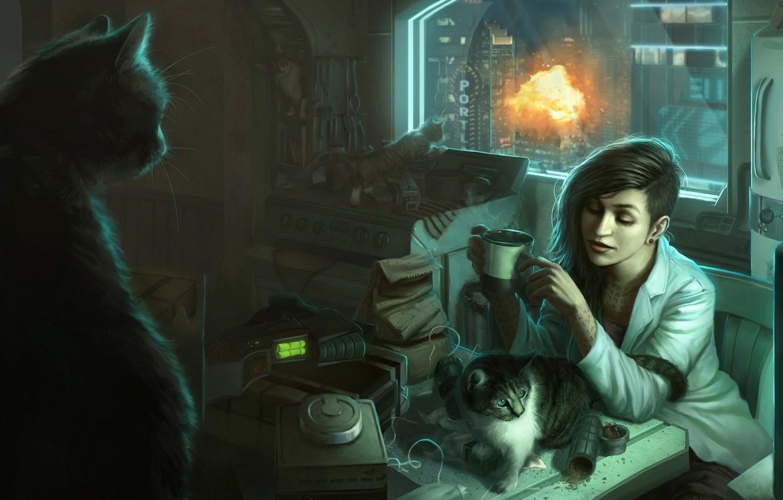 Фото обои кошки, взрыв, Девушка, окно, квартира, беспорядок