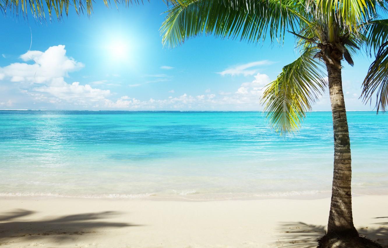 Обои Вода, отражения, Пальма, пирс, бассейн. Пейзажи foto 13