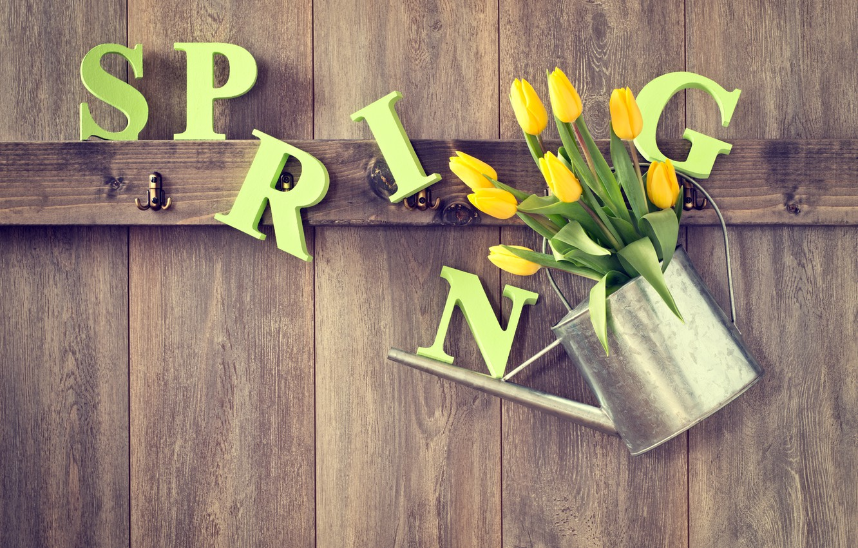 Фото обои дерево, весна, желтые, тюльпаны, лейка, wood, flowers, tulips, spring
