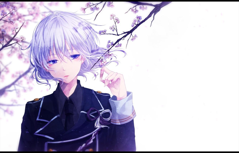 Фото обои цветы, аниме, сакура, арт, парень, mokoppe, touken ranbu, honebami toshiro