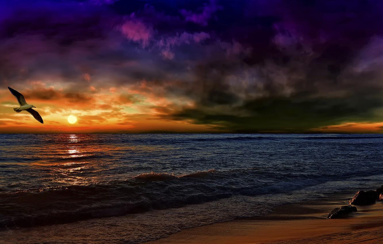 Фото обои волны, закат, обработка, чайка, Андалусия, после бури