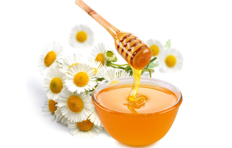 Фото обои цветы, ромашки, мед, ложка, белый фон, пиала