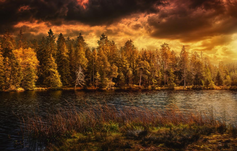 Фото обои озеро, Природа, Облака, Осень, Швейцария, Лес, Времена Года