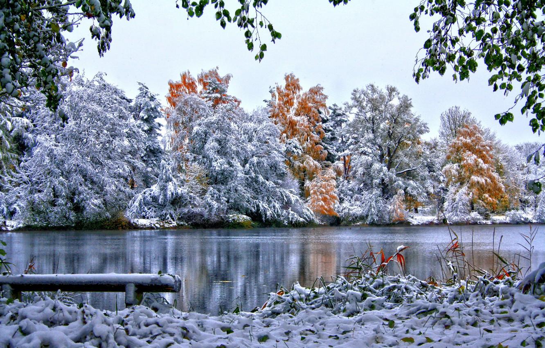 Фото обои зима, небо, трава, снег, деревья, природа, река, листва