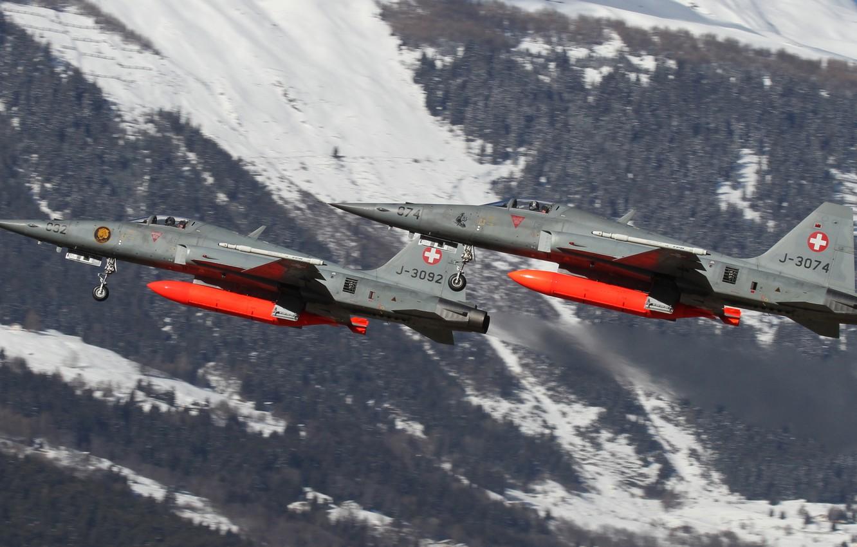 Обои истребители, «тайгер» ii, многоцелевые, F-5e, tiger ii. Авиация foto 12