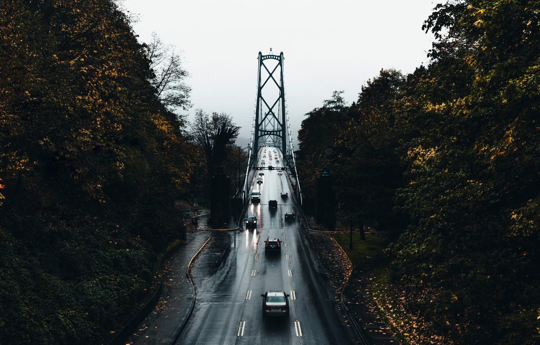 Фото обои дорога, осень, деревья, машины, мост, город, мокрая