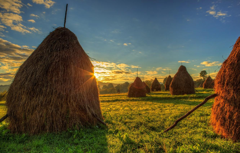 Фото обои Небо, Поле, Трава, Рассвет, Сено, Пейзаж, Румыния, стога