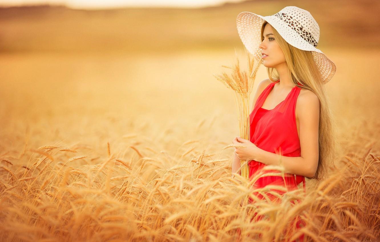 Фото обои поле, девушка, колоски, шляпка, в красном