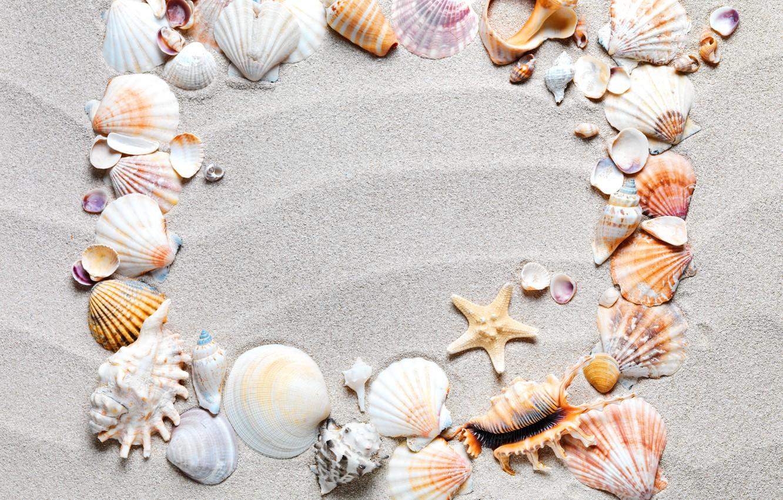 Фото обои песок, пляж, рамка, ракушки, sand, starfish, seashells