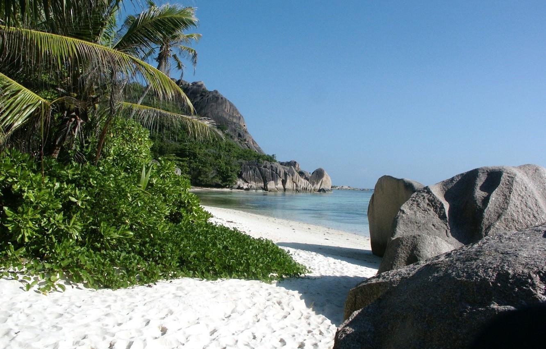 Фото обои песок, море, тростник, тропический пляж, камни