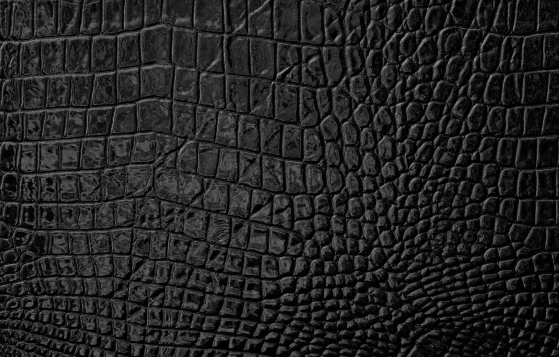 Фото обои кожа, texture, leather, skin