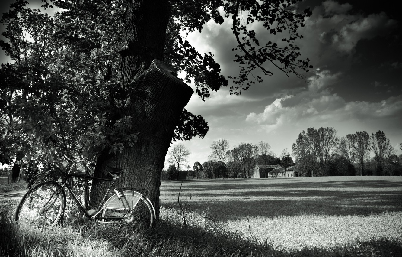 Черно белые фото в высоком разрешении