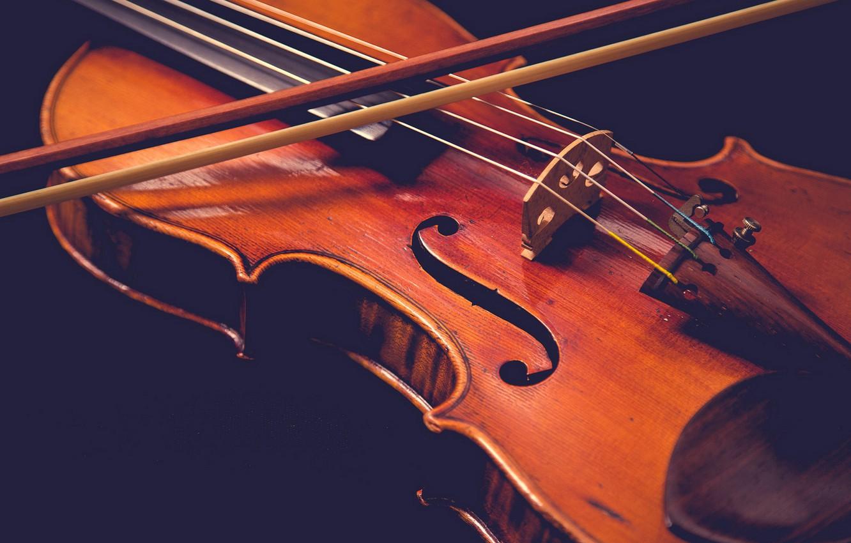 Обои музыка, скрипка. Музыка foto 17