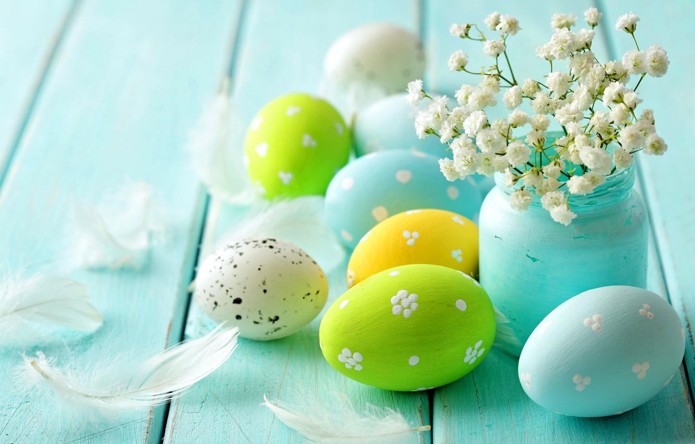 Обои перо, яйца. Разное foto 12