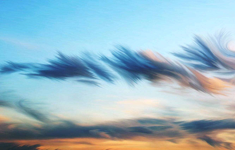 Фото обои небо, облака, рисунок