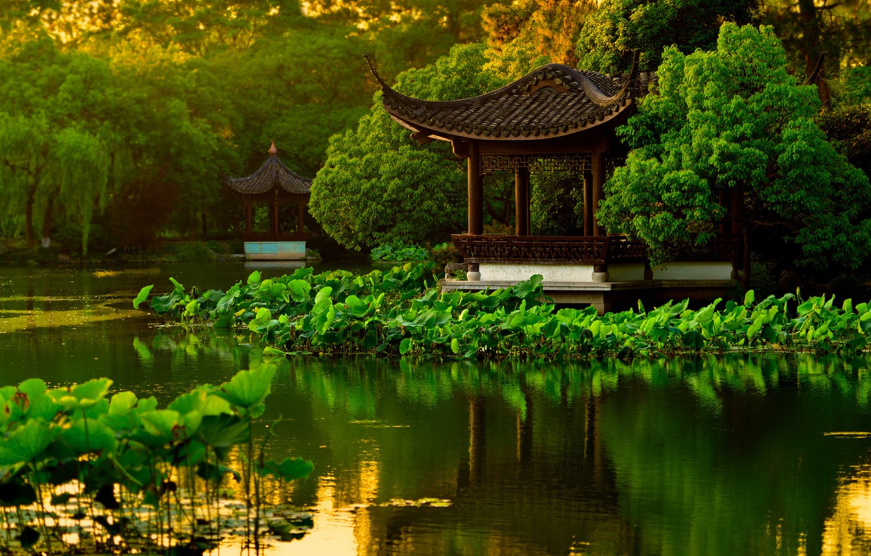 Фото обои вода, деревья, пруд, парк, сад, Китай, пагода, лотосы, Ханчжоу, беседки