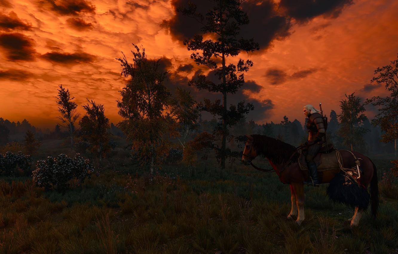 Фото обои конь, игра, наездник, охота, ведьмак, дикая, лошать