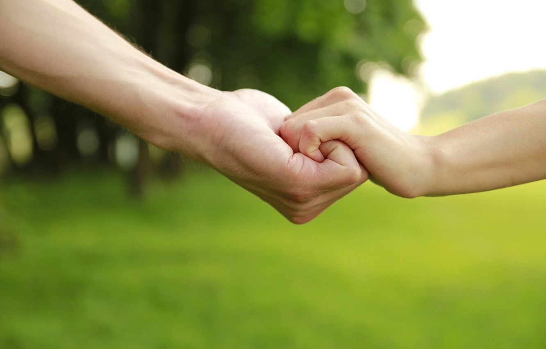 Фото обои деревья, дети, зеленый, фон, widescreen, обои, настроения, ребенок, защита, мальчик, руки, отец, опора, девочка, wallpaper, …