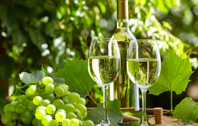 Фото обои зелень, листья, вино, бутылка, сад, бокалы, виноград, пробки, бочка, боке
