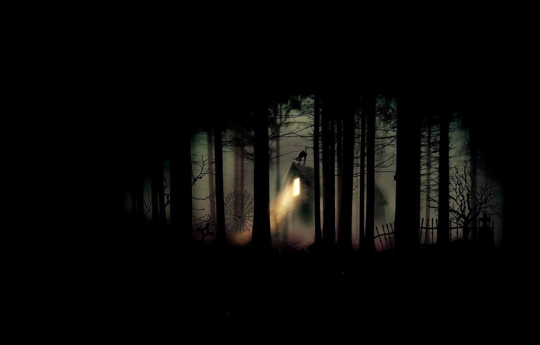 Фото обои лес, ночь, тьма, паутина, кладбище, хижина, черный кот, проклятое место