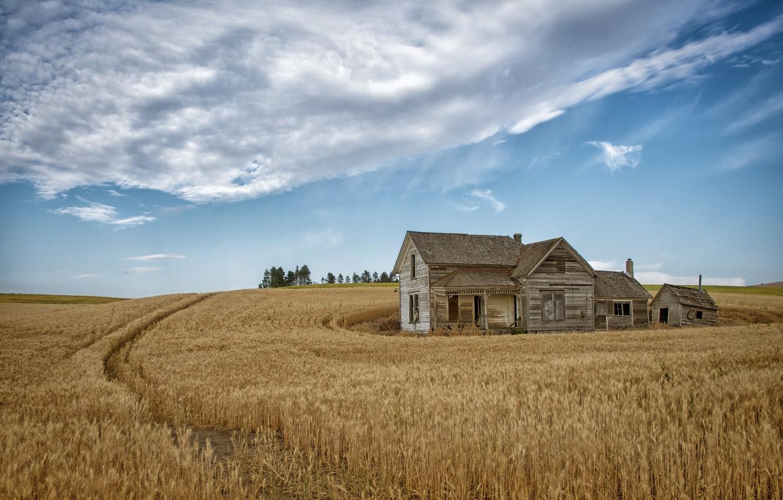 Картинки поля и дома
