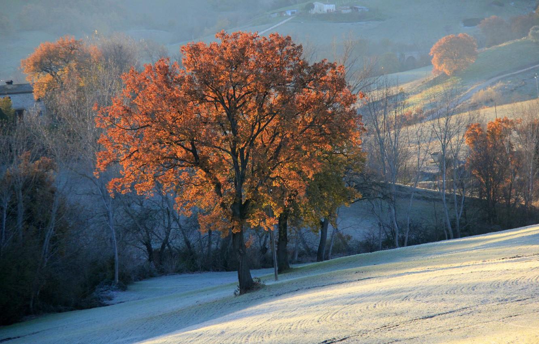 этом осенний пейзаж со снегом фото нее тогда были