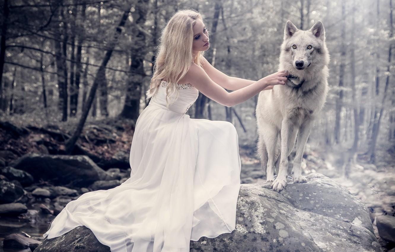 Фото обои девушка, природа, собака