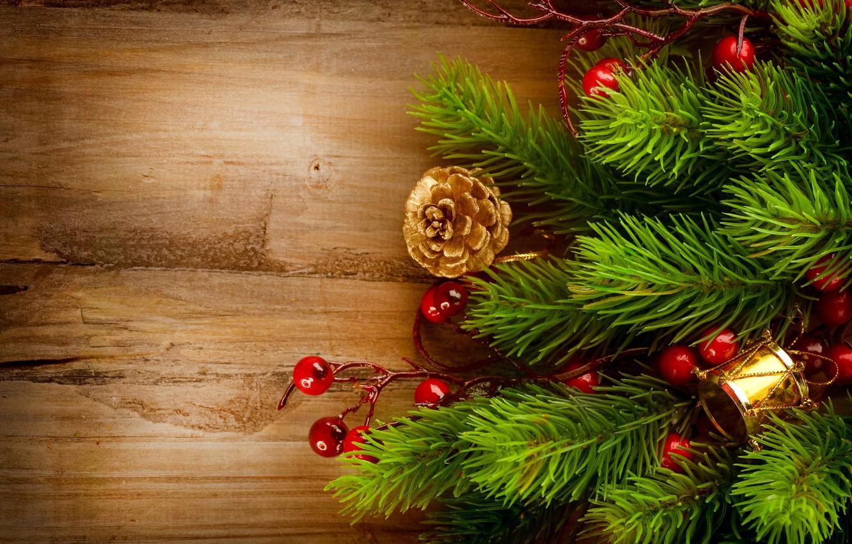 Фото обои елка, ель, ветка, Новый Год, Рождество, ёлка, Christmas, шишки, золотые, праздники, New Year, падуб