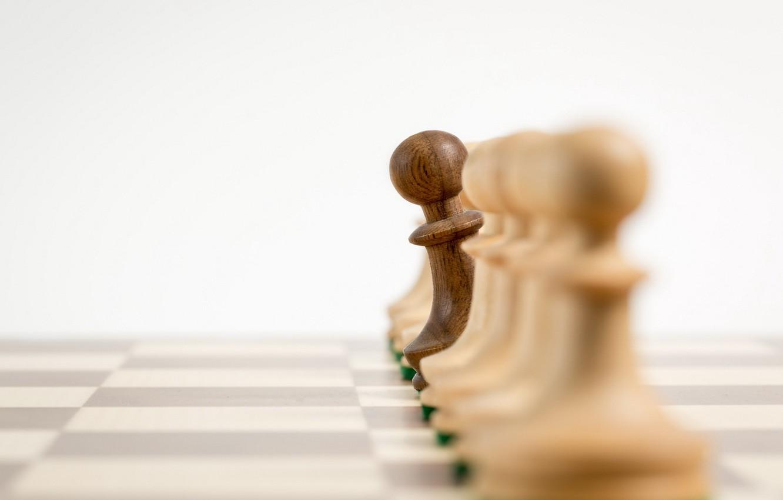 Фото обои макро, шахматы, пешки
