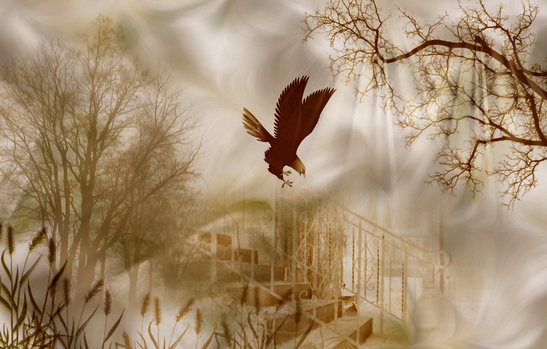Фото обои стиль, фон, дерево, птица