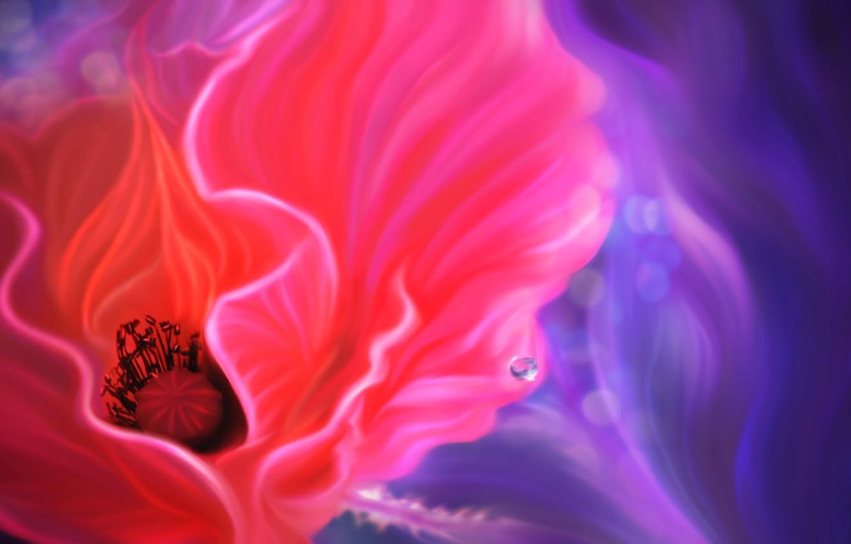 Фото обои цветок, линии, мак, капля, арт
