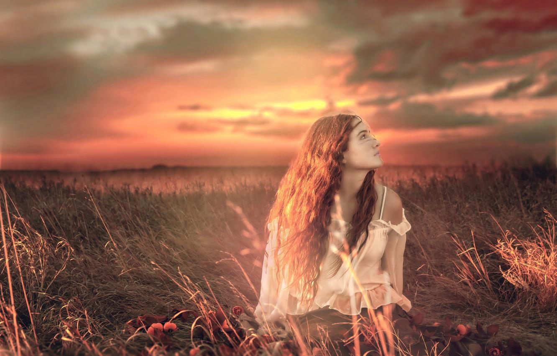 Фото обои поле, девушка, закат, цвет