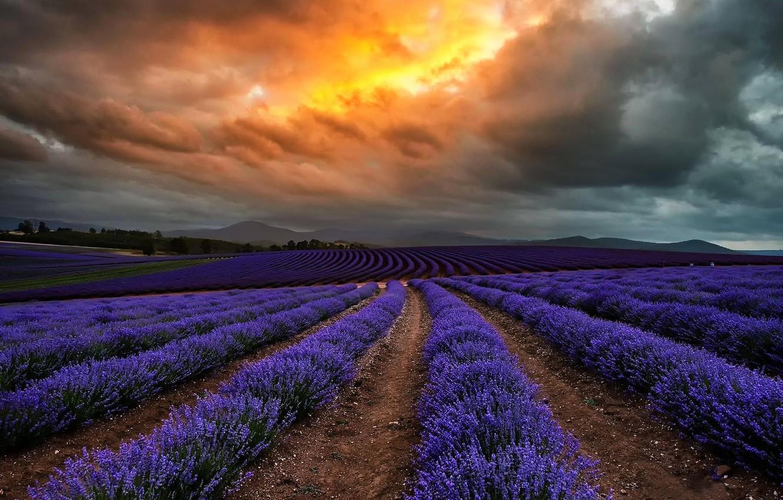 Обои тучи, цветы, Облака. Природа foto 8
