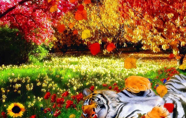 Фото обои трава, листья, яркие краски, деревья, цветы, природа, тигр, тепло