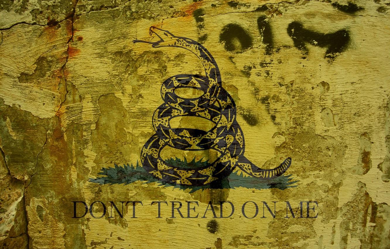 Обои snake, Dont tread on me, Metallica. Музыка foto 6
