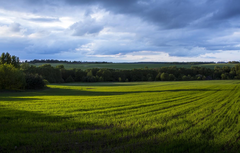 петли картинка рядом с полем велком
