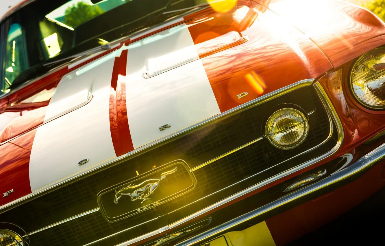 Фото обои Mustang, Ford, Ford Mustang, Fastback, 1967 Ford Mustang Fastback