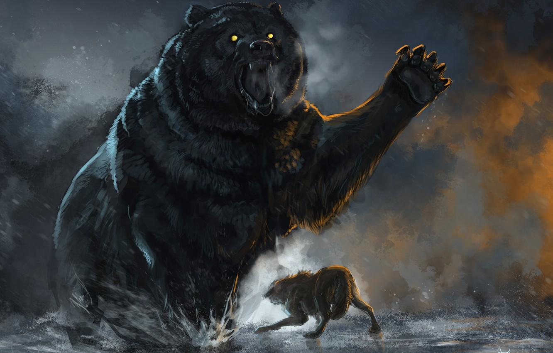 Фото обои Бой, Медведь, Волк