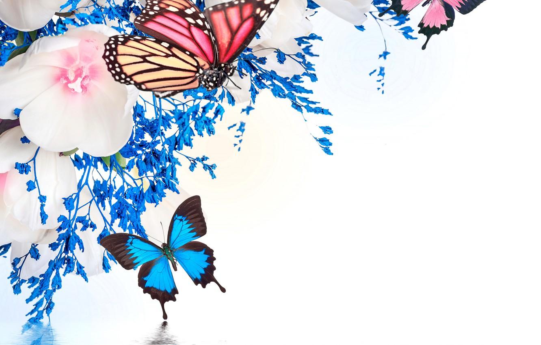 Фото обои вода, бабочки, отражение, весна, тюльпаны, цветение, water, blossom, flowers, tulips, spring, purple, reflection, butterflies