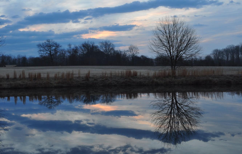 Фото обои поле, лес, небо, облака, деревья, тучи, отражение, река, поляна, Вечер