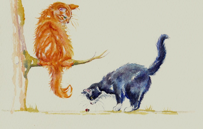 Фото обои кошки, коты, божья коровка, акварель