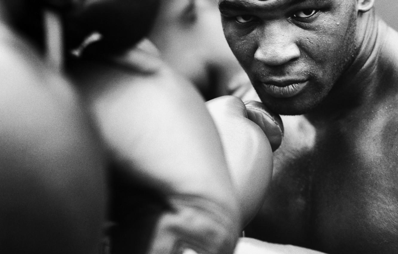 Фото обои Бокс, Майк Тайсон, Tyson