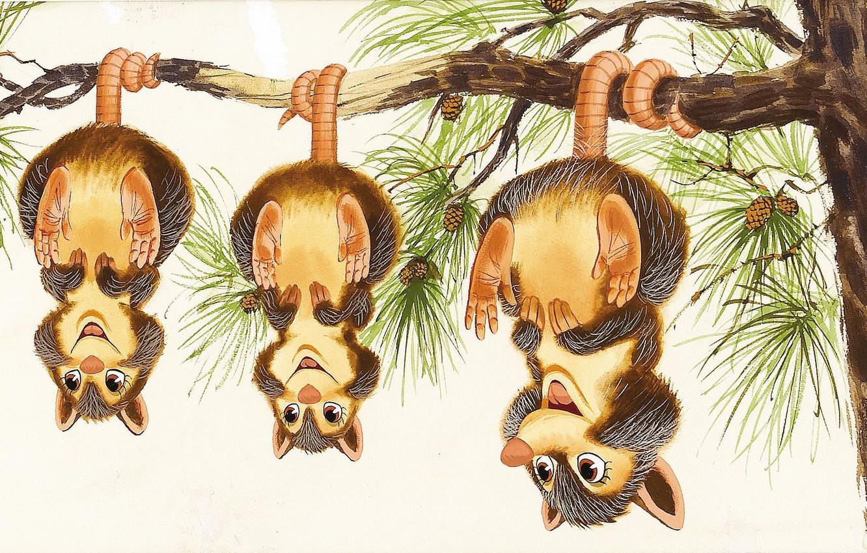 Фото обои дерево, настроение, ветка, арт, опоссум, детская