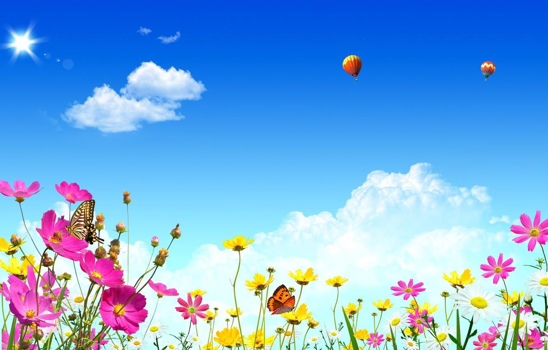 Обои блеск, аппликация, цветы, свет, блик. Разное foto 7
