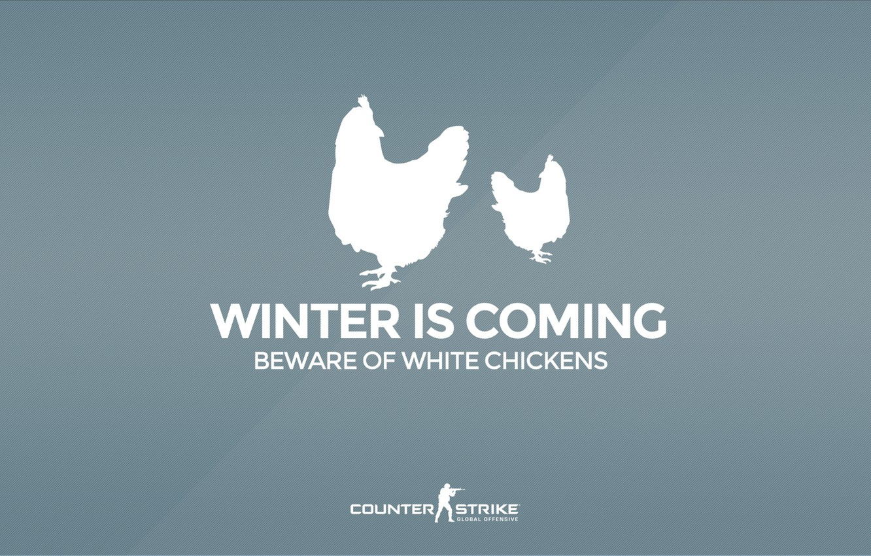 "Фото обои CS GO, Counter Strike Global Offensive, Серия ""CS GO Situation"", Beware of white chickens, Winter …"