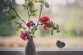 Картинка ваза, лепестки, цветы