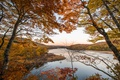 Картинка autumn's palette, trees, branches, autumn, lake, fall, leaves, fall colors, foliage
