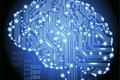 Картинка Hi-Tech, мозг, плата, Технологии