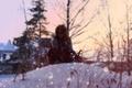 Картинка зима, девушка, куст, Снег, рыжая